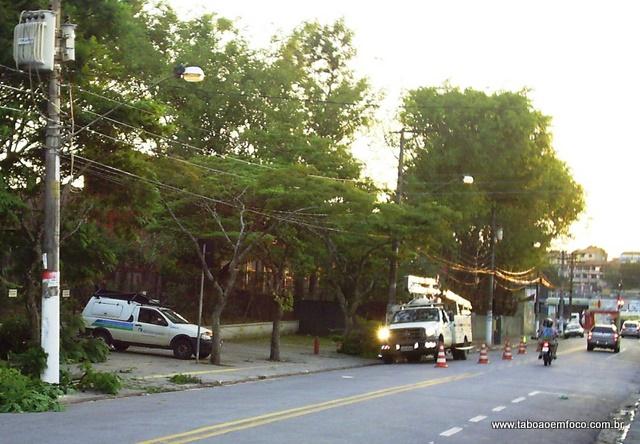 Eletropaulo faz poda em árvores no Parque Pinheiros (Foto: Williana Lascaleia)