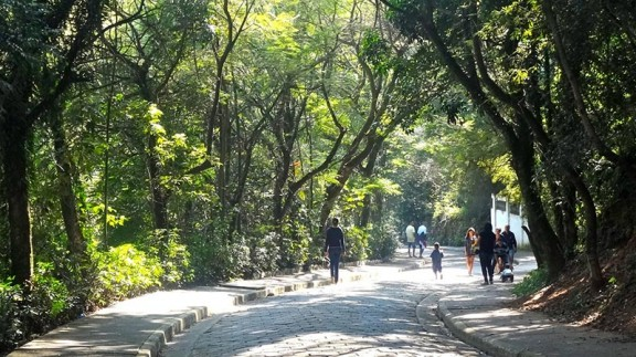 Parque das Hortênsias em Taboão da Serra - Divulgação