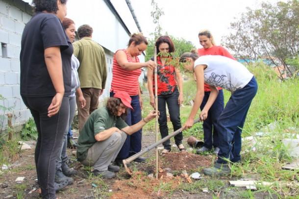 Plantio de árvore aconteceu nas Escolas Municipais de Taboão da Serra (Foto:  Vagner Hernandez / PMTS)