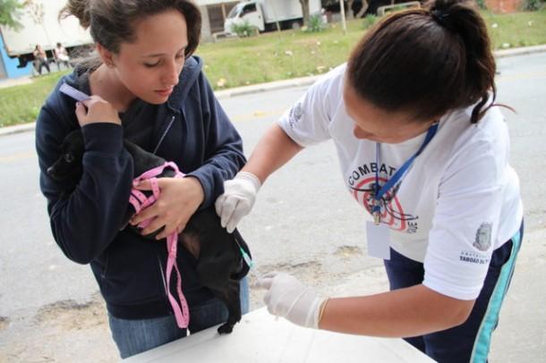 Centro de Controle de Zoonoses pretende aplicar 15 mil vacinas antirrábicas durante a campanha (Foto:  Ricardo Vaz / PMTS)