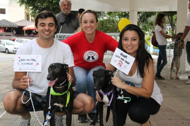 Feira de adoção em Taboão da Serra dá novo lar a 19 animais.