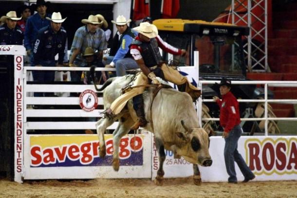 Rodeio Internacional reúne várias modalidade, como a montaria em touros