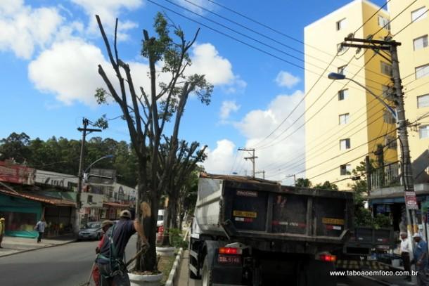 Árvores ficam seu suas copas após trabalho de poda realizada pela Prefeitura de Taboão da Serra.