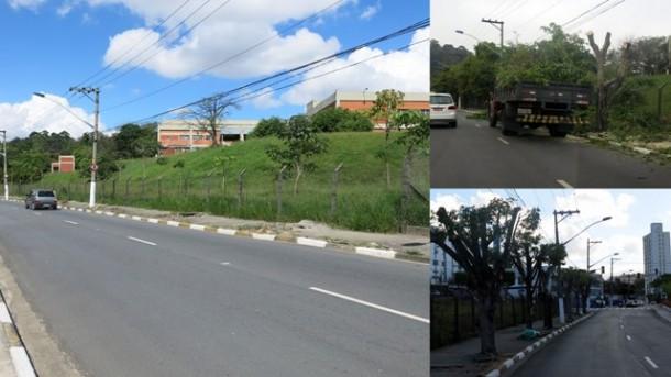 Avenida Armando Andrade tem suas árvores arrancadas de forma criminosa. Nos detalhes, a ação da Prefeitura de Taboão da Serra em setembro de 2016.