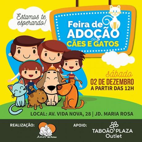 post_feira_adocao_cae_gatos