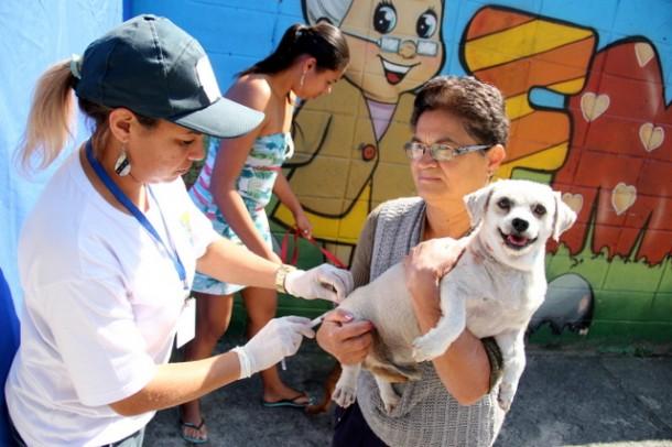Campanha para vacinar cães e gatos começa dia 01 de agosto e termina no final do mês do agosto. (Foto: Ricardo Vaz / PMTS)