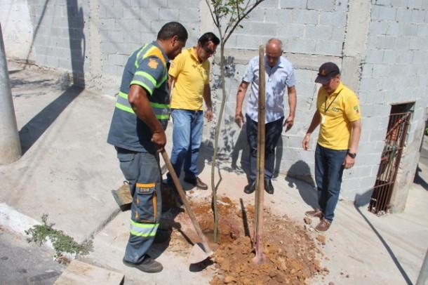 Calçada do Ginásio Zé do Feijão ganhou duas árvores em homenagem ao Dia em Memória às Vítimas de Trânsito, (Foto: Ricardo Lima / PMTS)